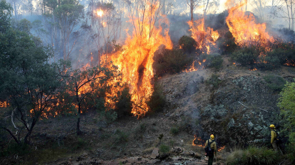The MCF has donated AUS $150,000 to help people affected by the catastrophic and ongoing Australian bushfires. Photo by Ann Inger Johansson/ZUMA Wire/Shutterstock (10524216i)
